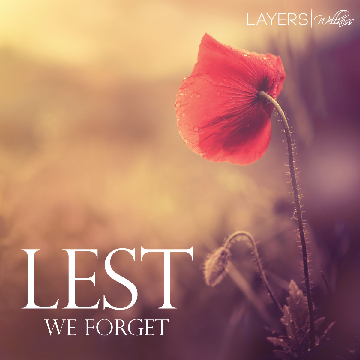 RememberanceDay2015